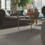 Shaw Brand Carpeting - Carpet Depot AZ