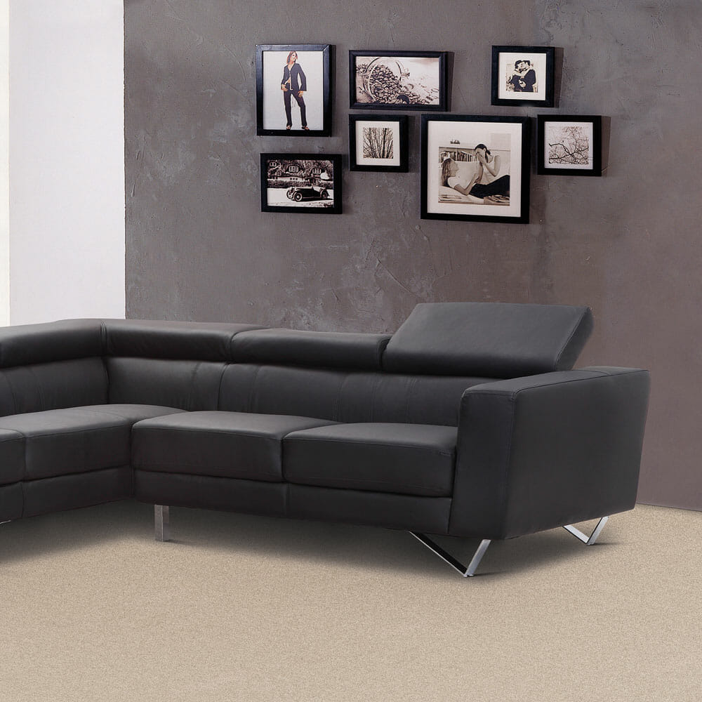 Phenix Brand Carpeting - Carpet Depot AZ